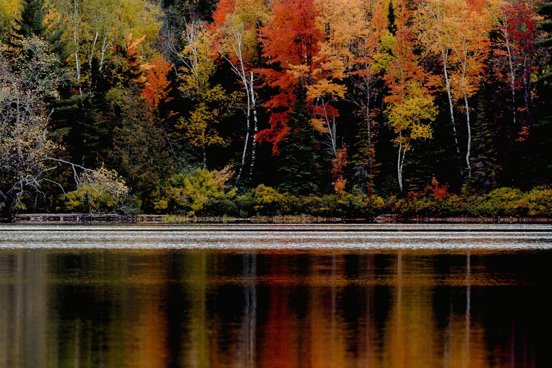 autumn-colors-3070989